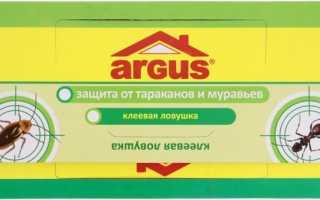 Аргус от тараканов — описание, применение ловушки и геля, эффективность