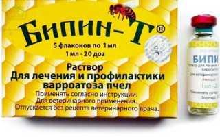 Обработка пчел от клеща осенью Бипином — описания, правила проведения процедуры, эффективность