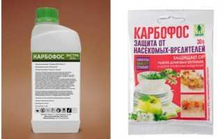 Карбофос от тараканов — самостоятельное применение в домашних условиях