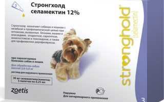 Стронгхолд для собак — действие, эффективность, инструкция, отзывы