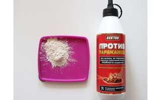 Гектор от тараканов — действие, эффективность, безопасность