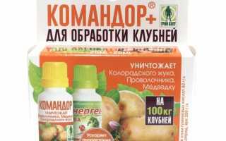 Командор от колорадского жука — описание препарата, действующего вещества, состав, форма выпуска, цена