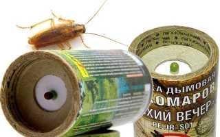 Дымовая шашка не спасет вас от тараканов навсегда!