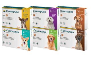 Симпарика от блох и клещей для собак — эффективность, особенности, преимущества, инструкция, меры безопасности!