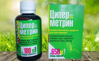 Циперметрин от тараканов — действие, эффективность, меры безопасности