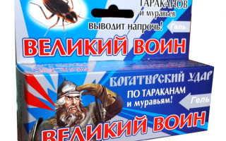 Великий воин гель от тараканов — описание, действие, инструкция, эффективность, меры безопасности
