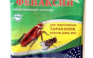 Фенаксин от тараканов — описание, действие, эффективность, инструкция