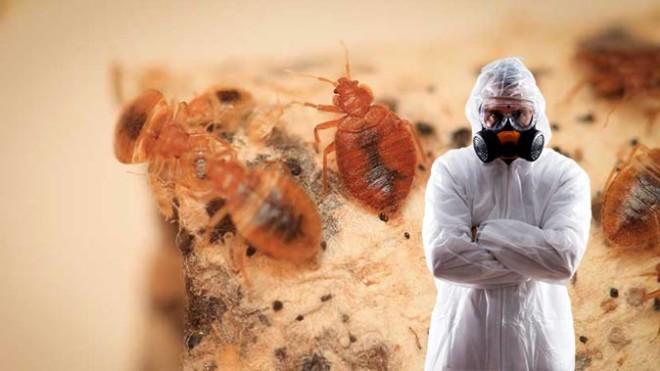 Устойчивость к пестицидам