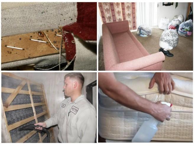 Обработка квартиры