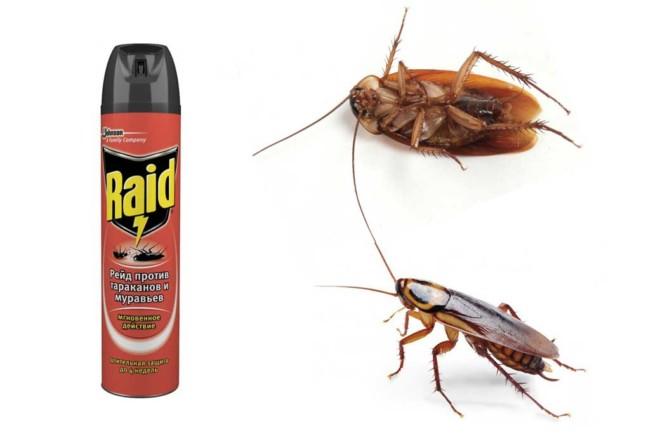 Дихлофос Рейд от тараканов