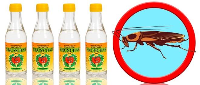 Использование уксуса от тараканов