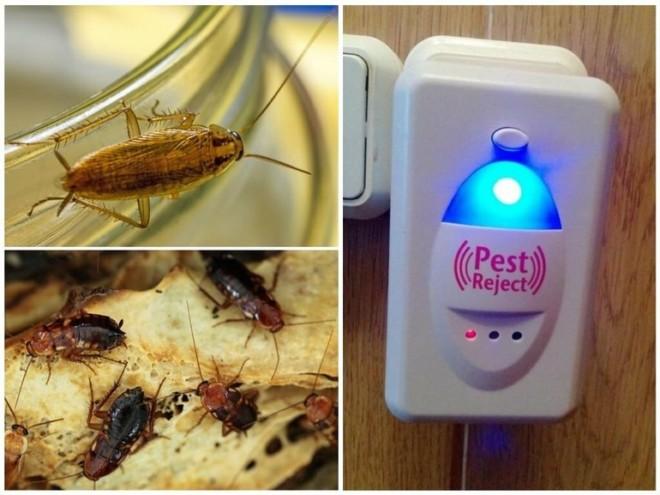 Отпугиватели от тараканов