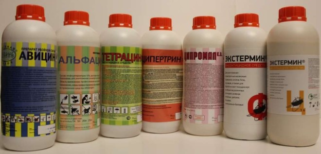 Профессиональные пестициды от тараканов