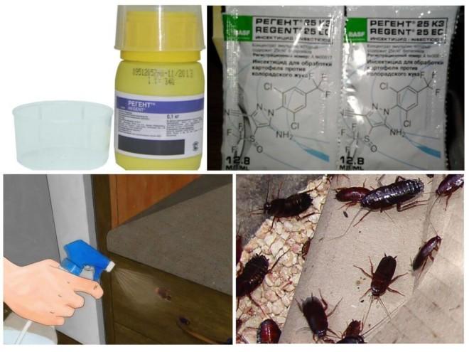 Регент от тараканов - подборка