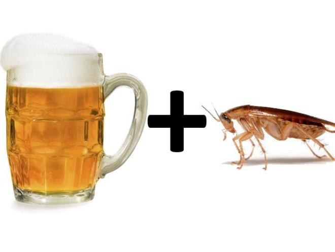 Тараканы любят пиво