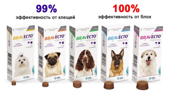 Бравекто таблетки для собак