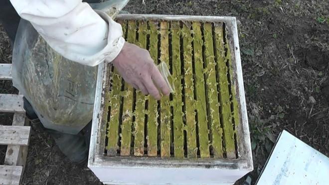 Хвойная мука для пчел