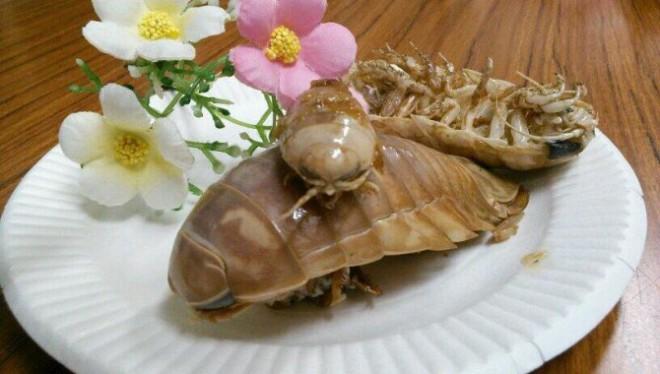 Морской таракан для еды