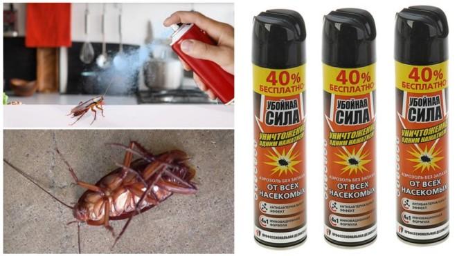 Убойная сила аэрозоль от тараканов