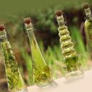 Эфирные масла от блох — описание, действие, эффективность
