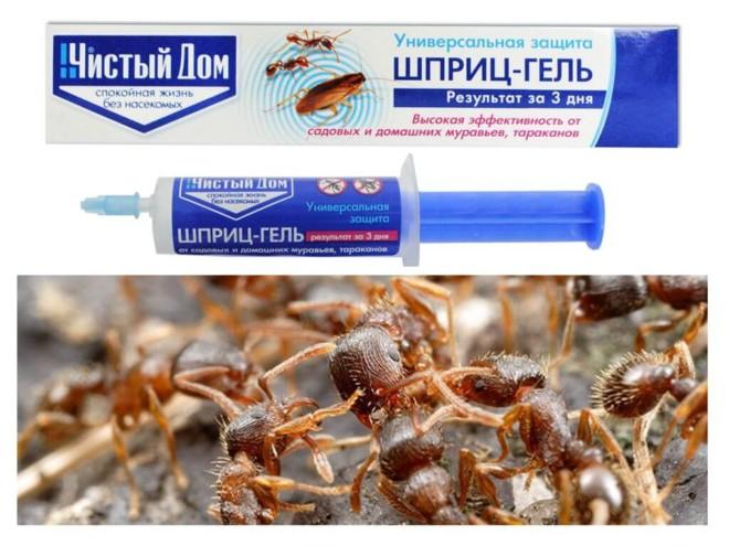 Чистый дом гель от муравьев