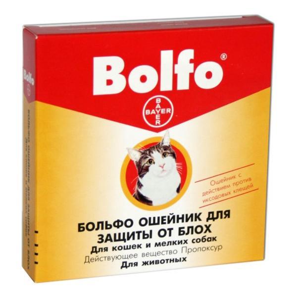Ошейник Болфо