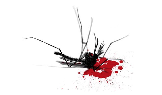 Убитый комар