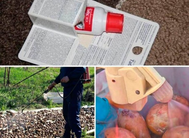 Обработка Табу картошки