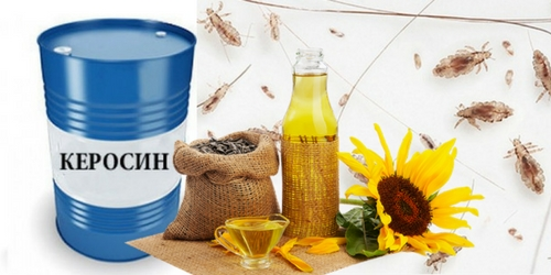 Керосин и масло от вшей