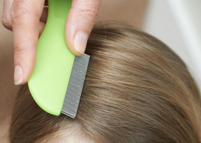 Гребнем вычесывают волосы