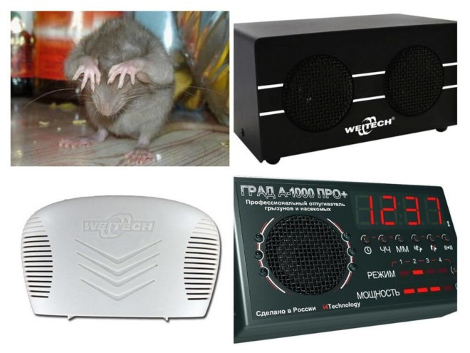Использование ультразвука от крыс